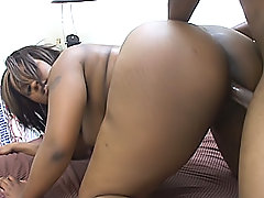Ebony BBW is a girl everyone wants to fuck